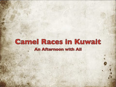 Camel Races in Kuwait: An Afternoon with Ali
