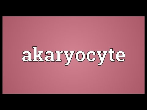 Header of Akaryocyte