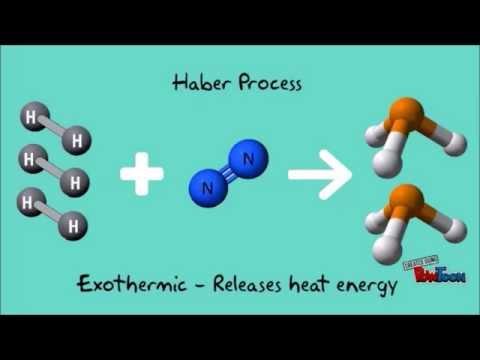 IChemE student video winner: Let's design a Haber process plant