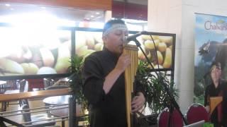 Musica Andina - Andean Music - Sunquyman - Chalwanka Cover