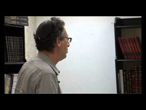Dr Chaim Luria's lecture (second part)