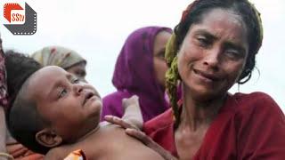 রোহিঙ্গা নারীকে কিভাবে ধর্ষণ করছে মায়ানমারে সেনারা দেখুন ভিডিওতে | Rohinga Tragedy
