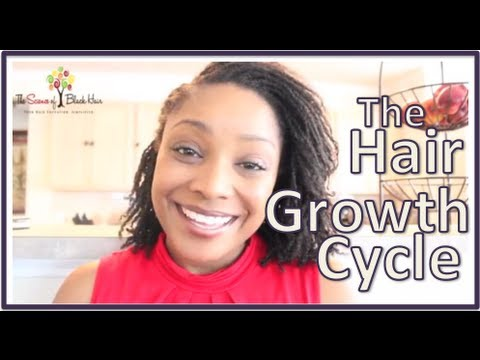 The Science of Black Hair: Basics of The Hair Growth Cycle