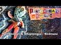 Pantomiman & Whiptongue - Birdmanz (HQ)