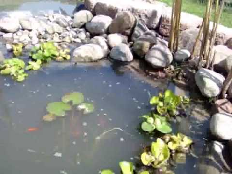 My Large Home Made Pond With Waterfall and Fountain / Water Feature Koi Goldfish