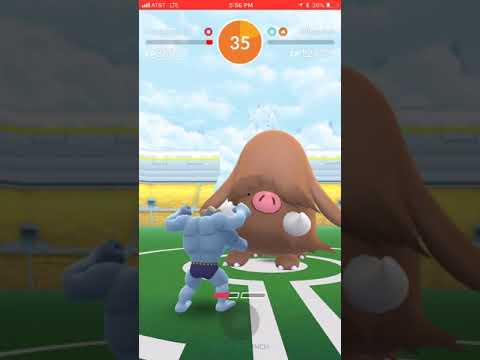 Machamp vs Piloswine 1v1