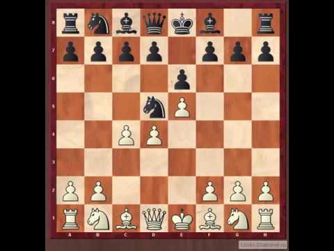 Шахматы. Ловушки в дебюте. Защита Алехина