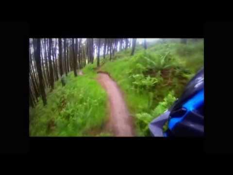 Afan Forest - Cube XMS 120