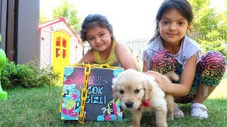 Köpeğim Gizli Kilitli Kutuyu Buldu - Elif Öykü and Masal Pretend Play Lock Stars , Family fun Video