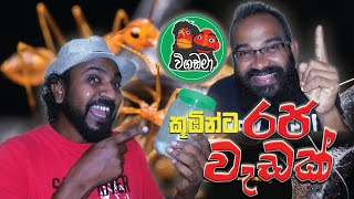 Vigadama | Raja Wadak / Sri_Lankan_Sketch_Comedy
