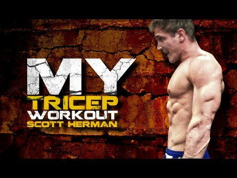 My Tricep Workout- Scott Herman Image 1