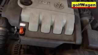 How to change oil and oil filter on VW Golf 5, 1.9TDI