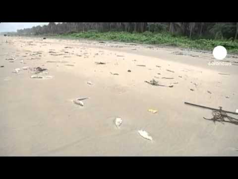 Coastal pollution fears after Nigeria oil spill -