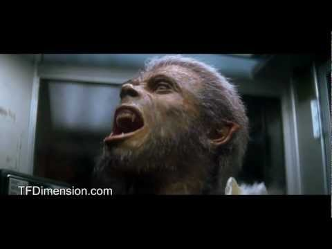 Watch Full  the monster squad tf2 werewolf transformation Online Movies