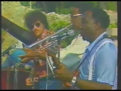 Muddy Waters / Clark Terry: Stormy Monday Blues (1977)