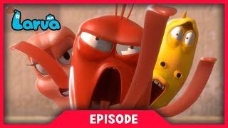 LARVA - DANCE BATTLE | Cartoon Movie | Cartoons For Children | Larva Cartoon | LARVA Official