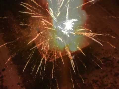 100 Shot Gold Palm Tree fireworks