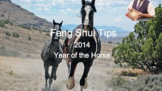 Feng Shui Tips 2014, Year of The Horse - Master George's Feng Shui Tips for 2014