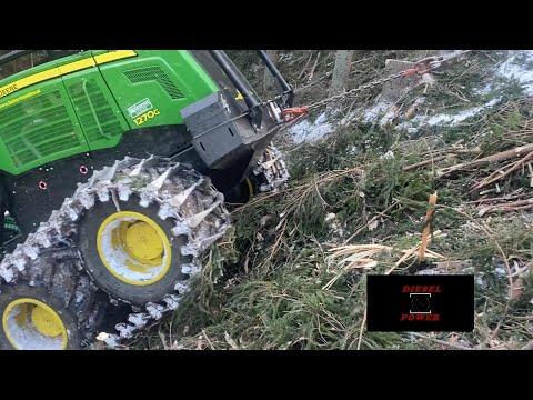 ⚓ Anker hält ⚓  | Gema's on | Perfekt | Steep Slope Logging | Im Steilhang mit Harry & Ernst