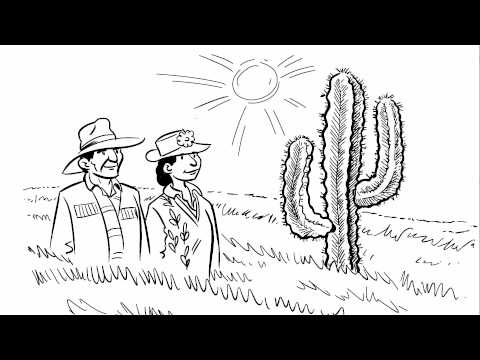Feeding Nine Billion Video 6: Climate Change and Food Security