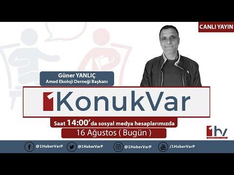 1KonukVar  16/08/2017