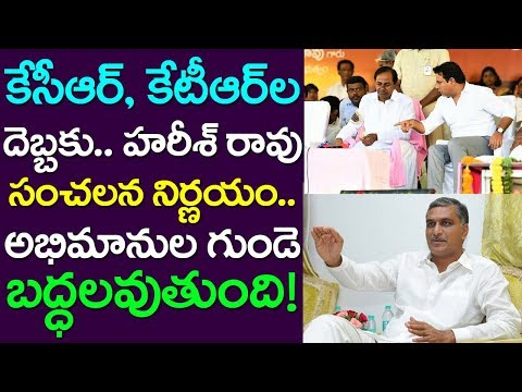 Harish Rao Took Sensational Decision| Telangana News | TRS | KCR | KTR