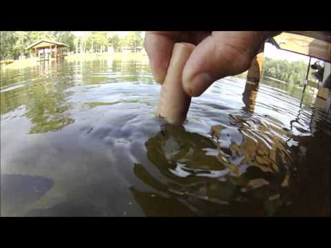 Gills Attack Part 2  Toledo Bend Jul 29 2012