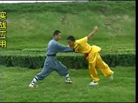 Shaolin Chain kung fu (lian huan quan), combat methods