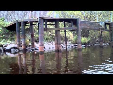 синявинское озеро рыбалка прокат