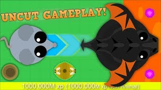 MOPE.IO UNCUT FOOTAGE FROM MOUSE TO BLACK DRAGON! INSANE UNCUT MOPEIO GAMEPLAY!
