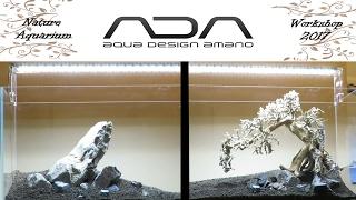 ADA 🌱 Aqua Design Amano 🌿 Nature Aquarium Workshop 2017