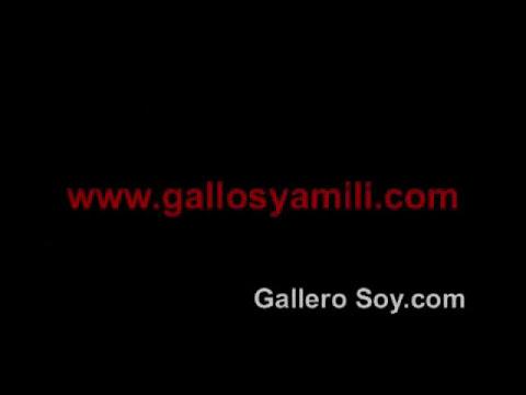 Entrevista a Bacho Barriola