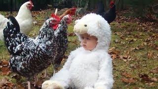 Les bébés et les tout-petits aiment les animaux de ferme - Compilation d'animaux drôles