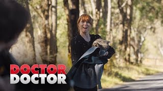 Penny saves a wombat | Doctor Doctor Season 3