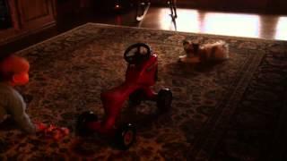 Child plays with tiny dog gizmo