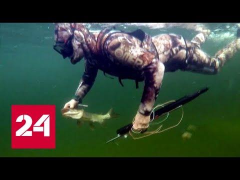 рыбалка в шанхае