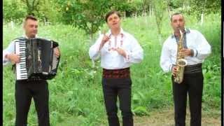 Puiu Codreanu - Stau in birt