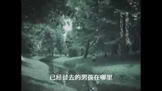 amin巫慧敏:Specks and Spikes MTV 2005ウーロン茶CM)