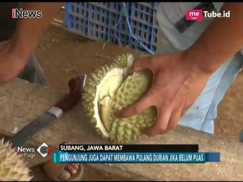 Gambar info haji kabupaten subang