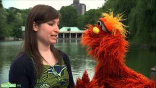 Sesame Street: Word on the Street - Vibrate - 1080p HD