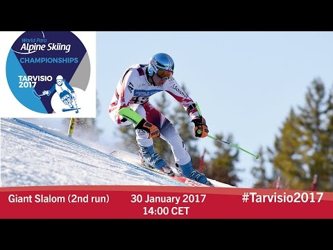 Giant slalom 2nd run | 2017 World Para Alpine Skiing Championships, Tarvisio