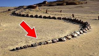 砂漠で発見された衝撃事実トップ6