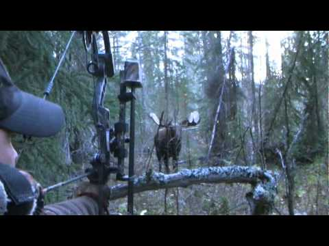 Yukon Moose Hunt