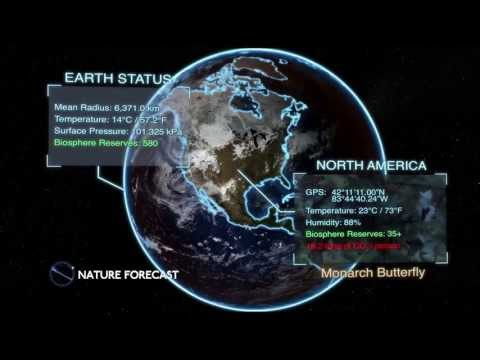 Nature Forecast - Monarch Butterfly