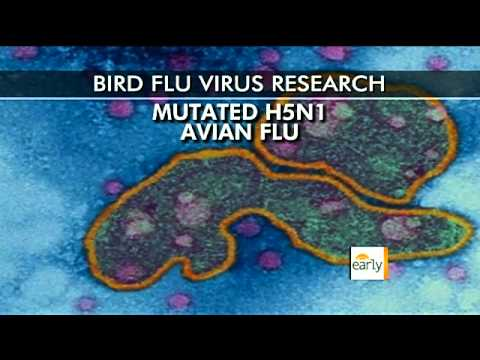 The Early Show - U.S. asks scientists to censor bird flu research
