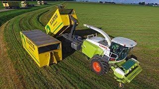 Claas Jaguar 'Doggy Style'   Grasdrogerij Hartog   Krone Big M 420 & ROC RT 1000