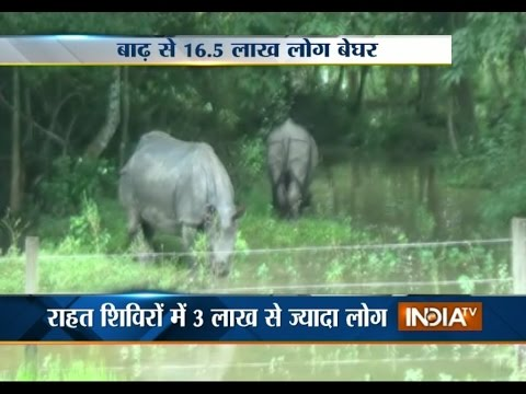 Assam Flood: Flood Toll in Assam Increases to 37 - India TV