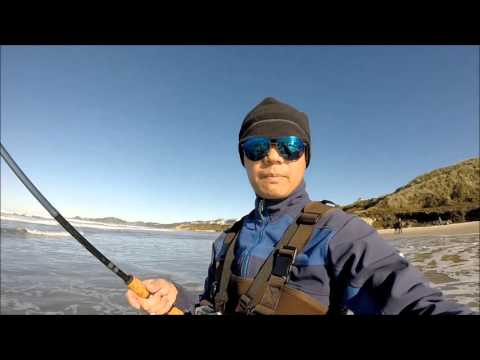 Fishing for redtail surf perch learn how to quickly earn for Surf perch fishing oregon