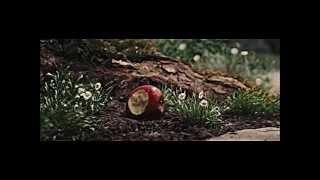 Snow White & the Huntsman - Snowwhite and the huntsman - bedroom hymns