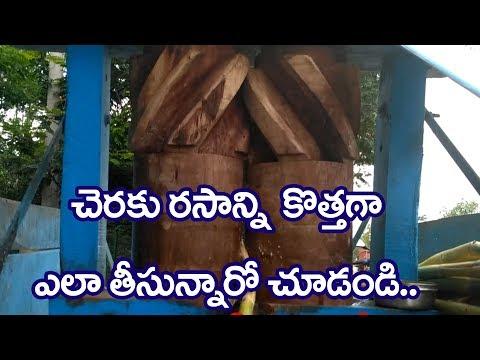 చరకురసాన్ని ఎలా తీస్తున్నారో చూడండి ll Telugu Focus TV